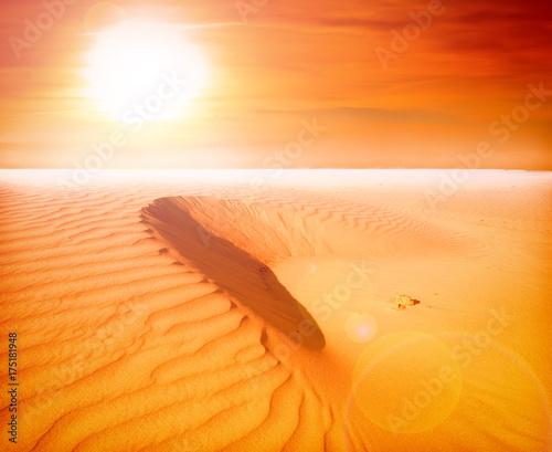 Foto op Canvas Honing sand desert landscape