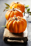 Pumpkins composition - 175183358