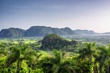 Beautiful morning view of green fields, trees and mogotes in Vinales Valley Cuba