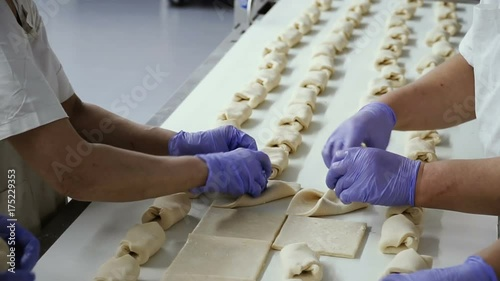 Women make rolls on in a bakery on a conveyor belt. Hands close up