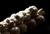 Bunch of garlic - 175236169