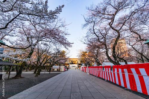 Foto op Plexiglas Lavendel 靖国神社の春