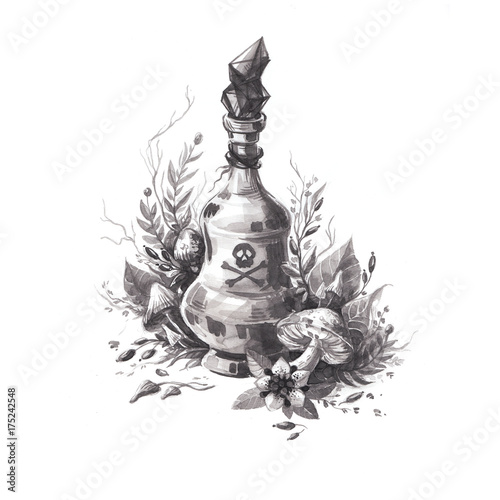 Hand drawn ink halloween detailed illustration of magic poison with