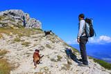 Hiking - 175248342