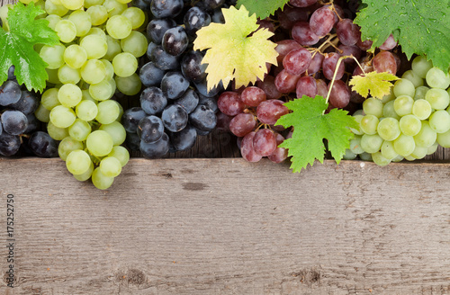 Various colorful grapes on wood