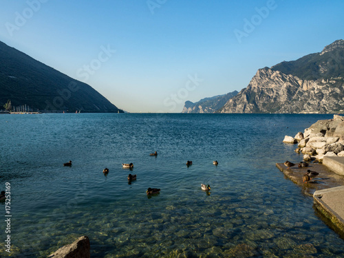 Deurstickers Groen blauw View on Malcesine and nord part of Garda lake, Italy. Summer, blue sky and bright sun.