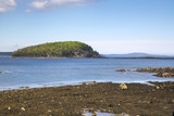Bar Harbor in the Acadia National Park - 175255792