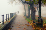 Young woman walking alone on foggy autumn day - 175261773