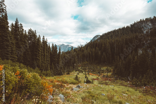Foto op Aluminium Chocoladebruin Fall in the mountains