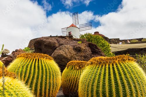 In de dag Canarische Eilanden Lanzarote