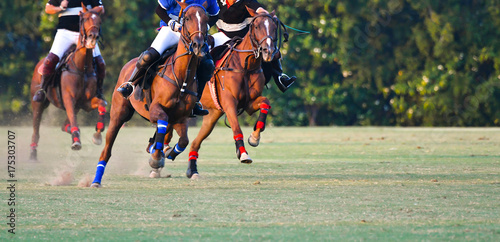 Aluminium Paarden The horse polo player are ridding