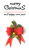 Santa Claus wish us a very Merry Christmas  - 175309777