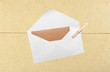 Blank envelope hanging on rope on wooden clothespin - 175315702