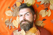 Man with long beard in natural yellow fall leaves.