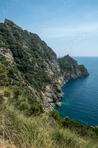Staande foto Liguria parc naturel de Portofino , italie