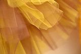 Golden yellow and brown tulle - 175340188