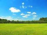 秋の草原と林風景 - 175346362