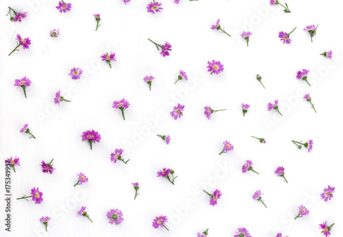 Floral pattern made of purple and green leaves, branches on white background Poster