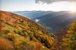 Quadro Automne dans les montagnes des Vosges Alsace