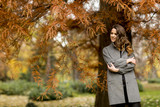 Young woman in the autumn forest - 175371710