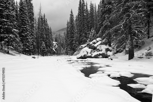 Papiers peints Gris Snowy Landscape
