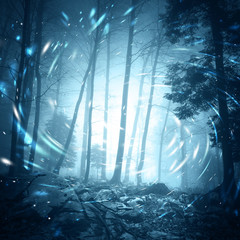 Foggy dark blue colored foggy forest tree landscape scene with mystical spin effect firefly lights. © robsonphoto