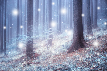 Beautiful blue color blurred foggy forest trees with illustrated abstract snowflakes. © robsonphoto