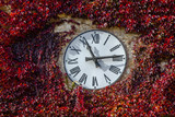 Fototapety Red clock tower, Frontino