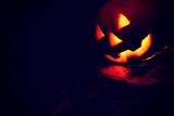 Jack-o'-lantern pumpkin on black background - 175421343