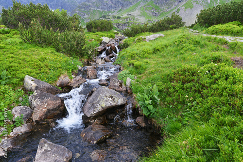 Fotobehang Bergrivier creek in mountain