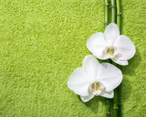 Two orchids and branches of bamboo lying on light green terry towel.  Viewed from above.