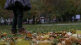 legs of a little girl on the autumn foliage. slow motion - 175436575