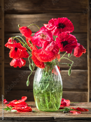 Bouquet of poppy flowers in the vase on the wooden table.