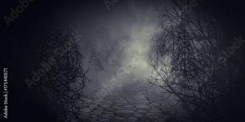 Leinwanddruck Bild Jack O' lantern or halloween pumpkin in spooky dark forest.3d rendering.