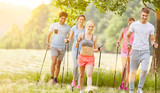 Gruppe beim Nordic Walking Kurs im Sommer