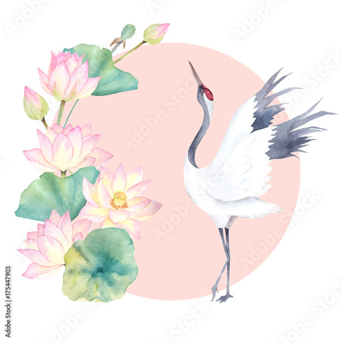 Watercolor crane with flower lotus. Japanese design. Hand drawn illustration - 175447903