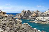 Ruhige Bucht mit klarem Wasser am Cap Creus, Katalonien, Spanien - 175465710