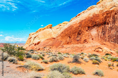 Fotobehang Blauw amazing valley of fire desert landscape, nevada