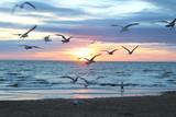 Beach Sunset - 175489145