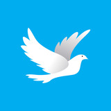 white pigeon - 175495504