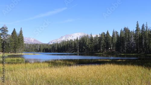 Tuinposter Khaki Yosemite