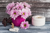 Pink chrysanthemum in concrete pot - 175499355