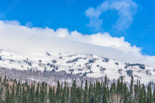 Fotobehang Blauwe hemel winter landscape with pine forest, snow mountain, clouds and blue sky