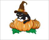 black cat on pumpkin - 175502351