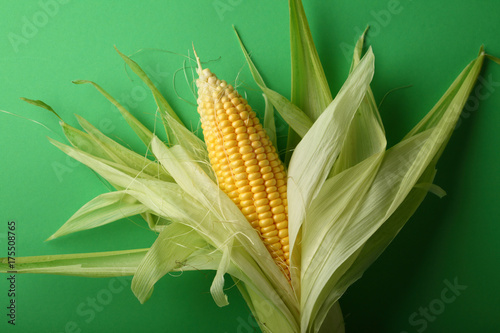 Corn cobs on green background