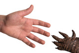 The human palm and the paw of the beast stretch towards each other. Isolated on white background.