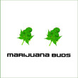 Marijuana Buds Vector Illustrated