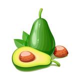 Avocado. Tropical exotic fruit. Natural organic healthy food. - 175525787