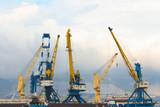Harbor cranes in the port - 175531199