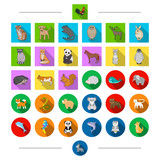 Ecology, protection, birds and other web icon in cartoon style. Exotic, zoo, safari, icons in set collection. - 175541920
